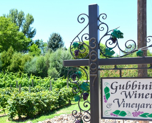 Gubbinni Vineyards