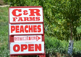 CR Farms Orchard