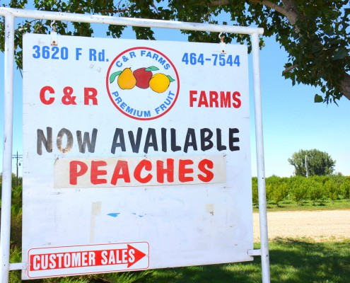 C and R farms Palisade