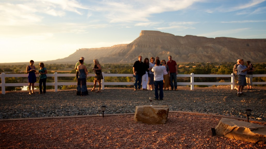 Palisade Co Wine Tours