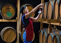 colorado wine tours
