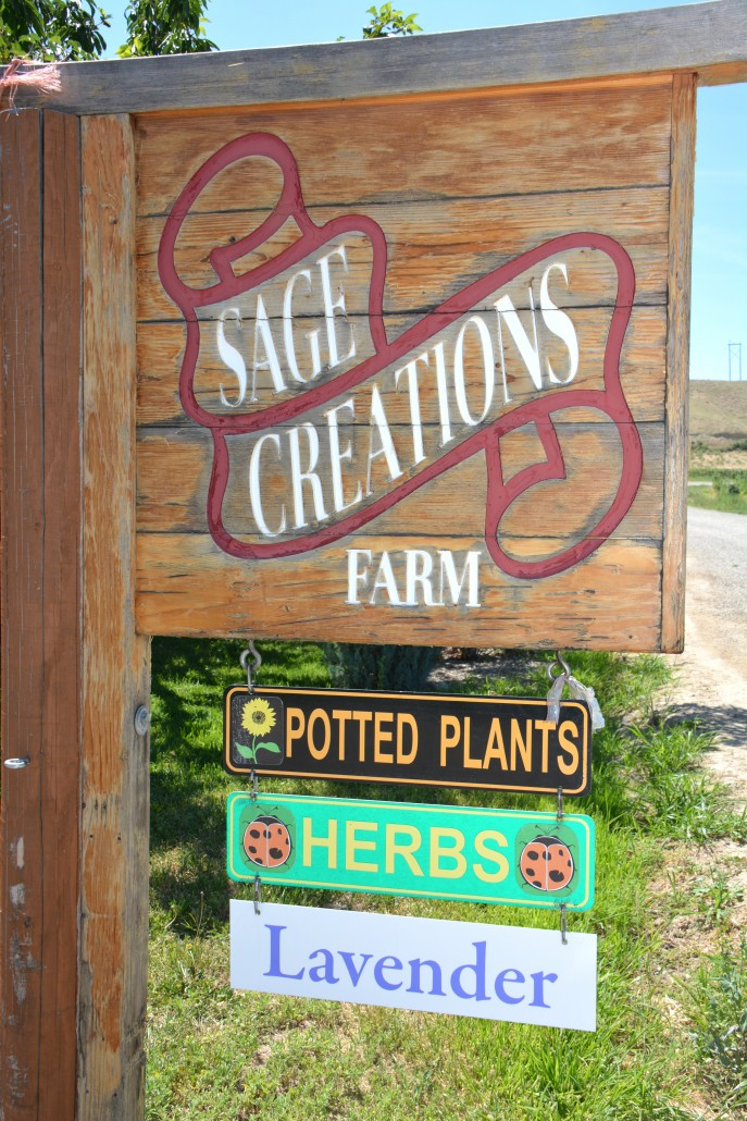 sage creations palisade CO