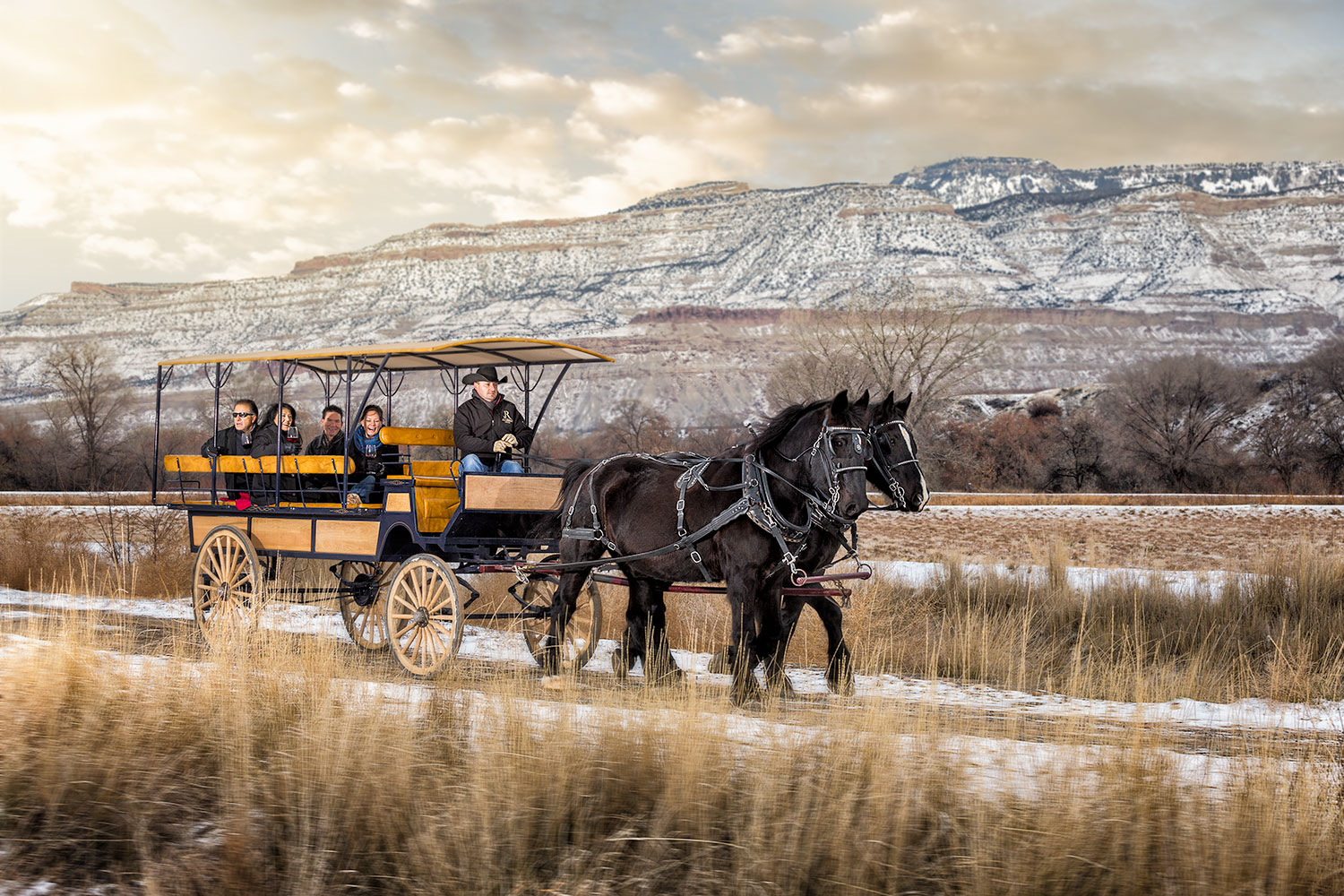Palisade wine tours by carriage