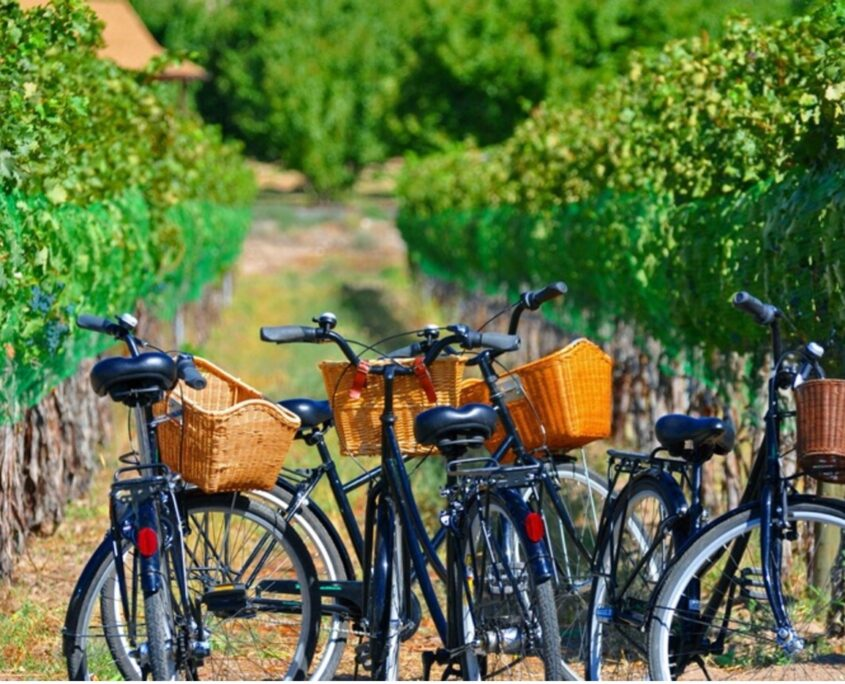 biking on the Fruit and Wine Byway